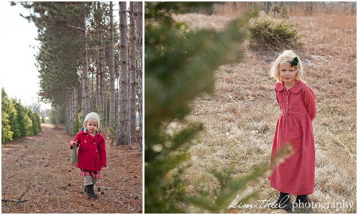 Wisconsin Christmas Tree Farm - Kim Thiel ...