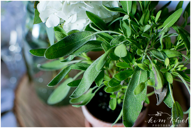 kim-thiel-photography-about-thyme-farm-wedding-085